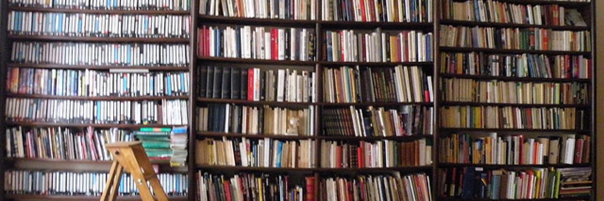 Bibliothèque par Frédérique Panassac, Licence CC:BY-NC-SA. Source [Flickr]