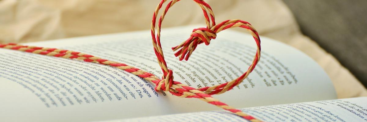 livre cadeau par condesign, licence CC0. Source [Pixabay]