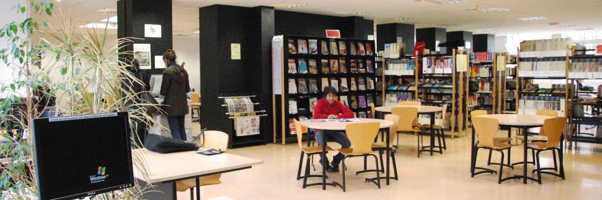 Bibliothèque des Sciences et Techniques des Activités Physiques et Sportives