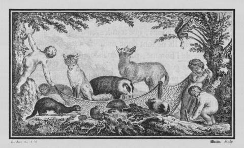 Sève, J. Illustrations de Histoire générale des animaux, 1758, Licence CC-BY. Source [wikimedia commons]