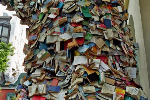 Alicia Martin: Biografias - Cascade of books par library_mistress, licence CC : BY-SA 2.0. Source [Flickr]