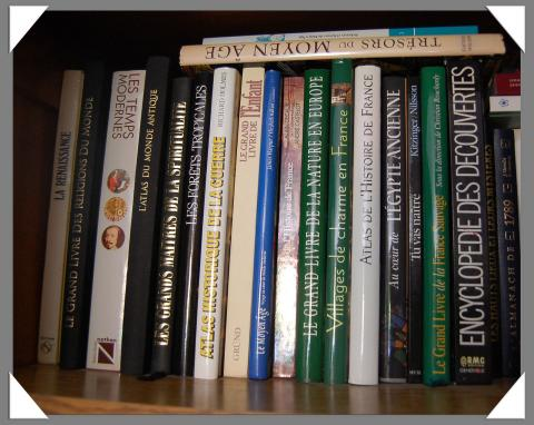 Quelques livres par gillyan9, licence CC : BY-NC-ND 2.0. Source [Flickr]