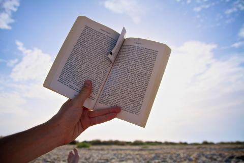 beach reading par Steve McFarland, licence CC : BY-NC. Source [Flickr]