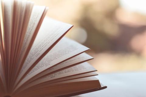 Livre par Pexels, licence CC0. Source [Pixabay]